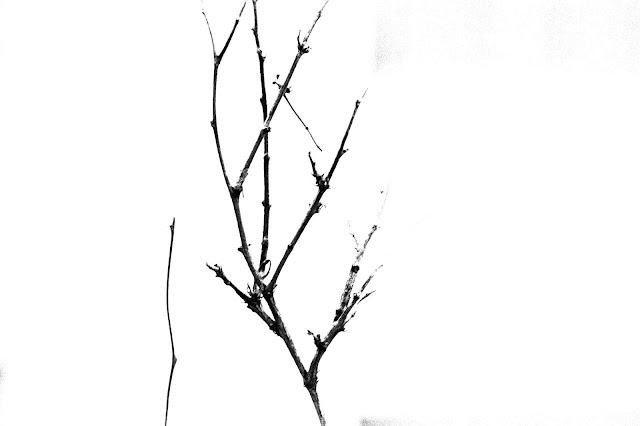 ကုိျမတ္စံ ● အေမ … က်ေနာ္နဲ႔ စက္တင္ဘာ မိုးစက္မ်ား …