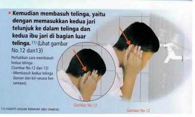 Membersihkan kedua telinga (berwudhu) - pustakapengetahuan.com