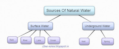 CBSE CLass 6 Science CH14 Water (MCQs)