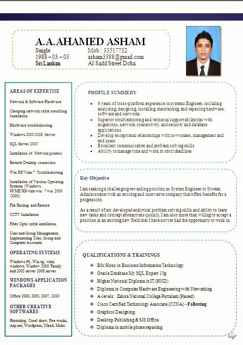 professional cv formats free download