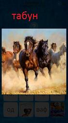 В поле бежит большой табун лошадей