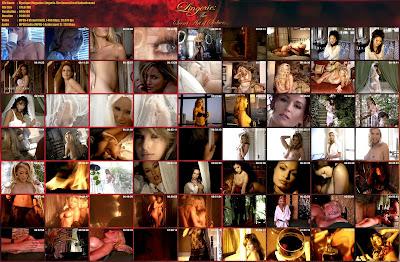 Lingerie The Secret Art Of Seduction 65