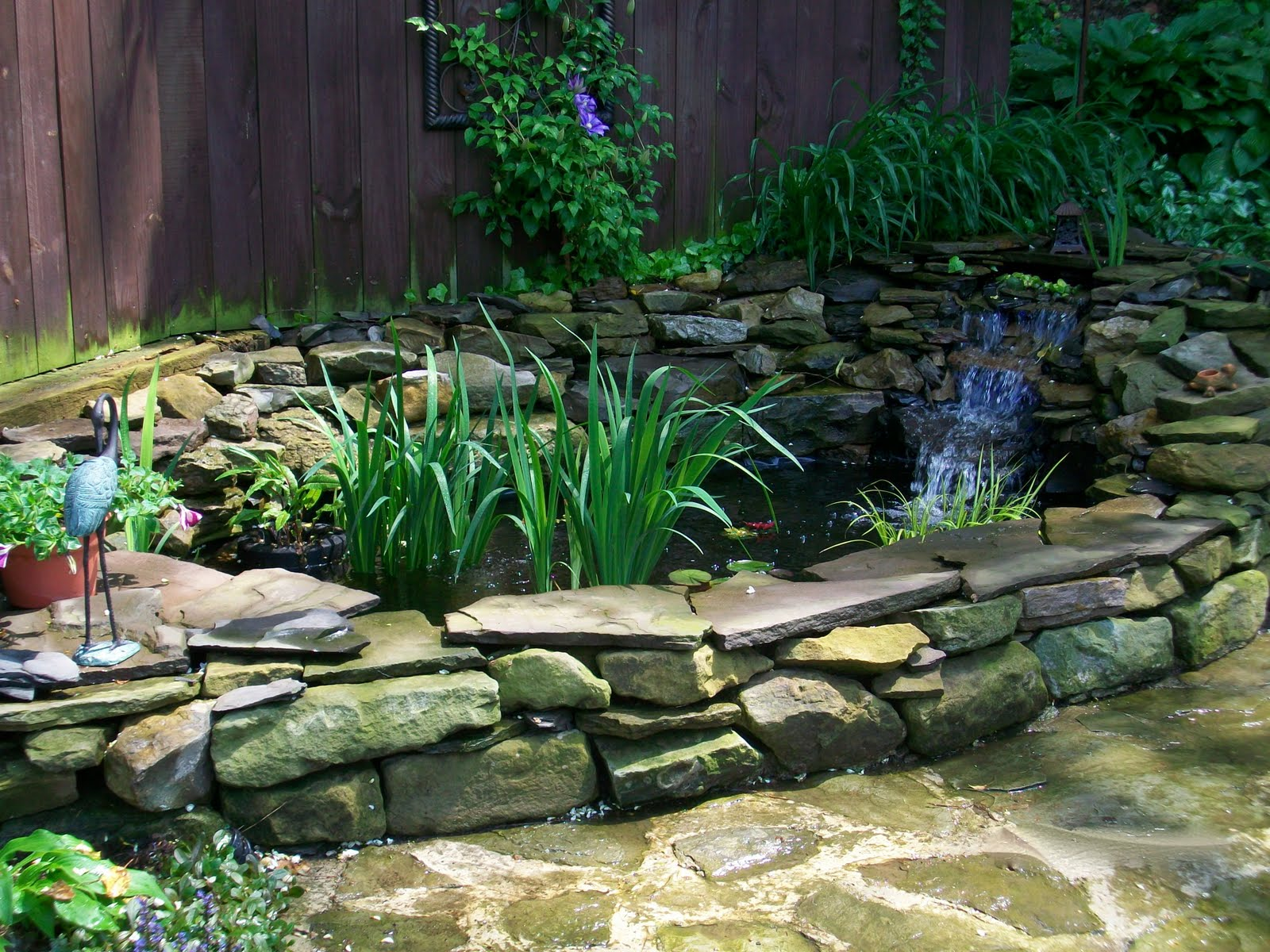 Building a backyard pond using a pond kit.: Building a