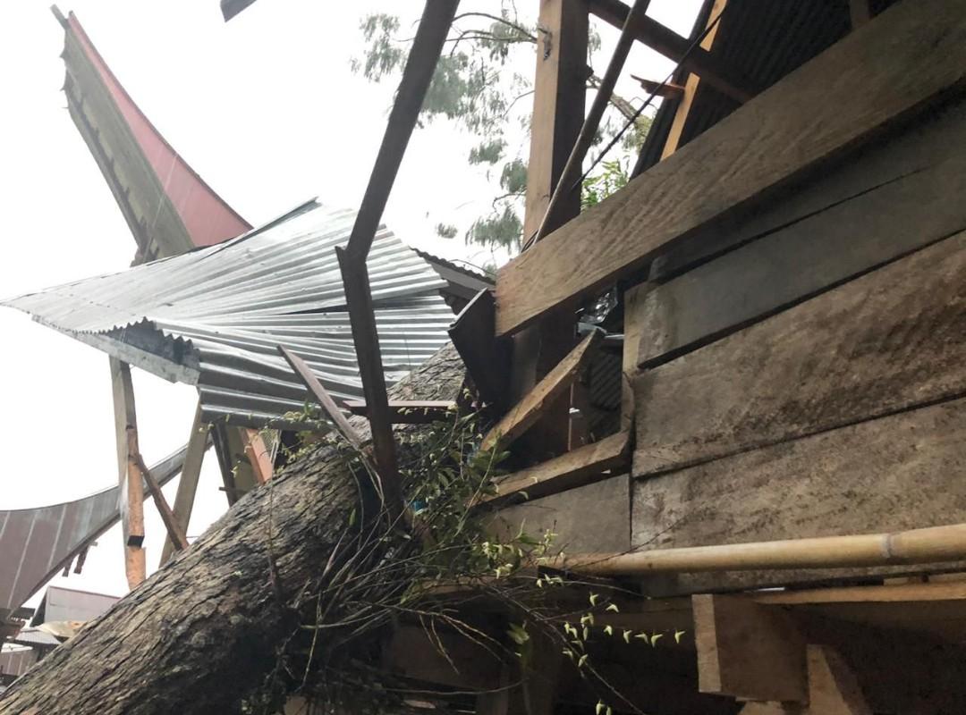 Angin Kencang Tumbangkan Pohon di Malimbong Balepe', Dua Unit Rumah Warga Rusak