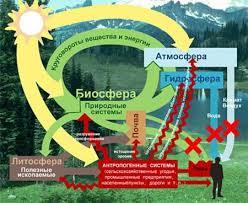 [Земля] Биогеоценозы, или экосистемы. Биосфера
