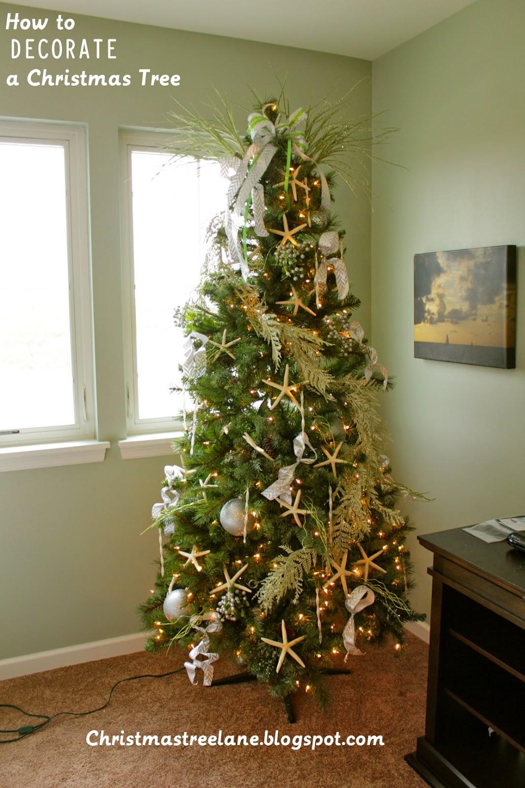 Christmas Tree Lane How To Decorate A Christmas Tree