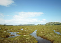 Crucial peatlands carbon-sink vulnerable to rising sea levels. (Credit: Alex Whittle / University of Exeter) Click to Enlarge.