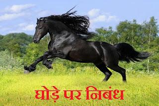 घोड़े पर निबंध