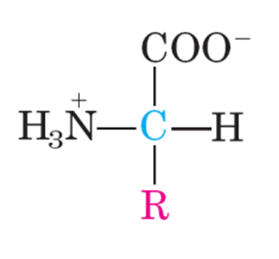 Praktikum Kimia Tentang Asam Basa Reaksi Kimia Wikipedia Bahasa Indonesia Ensiklopedia Bebas Laporan Praktikum Kimia Organik Analisis Kualitatif Protein Velas