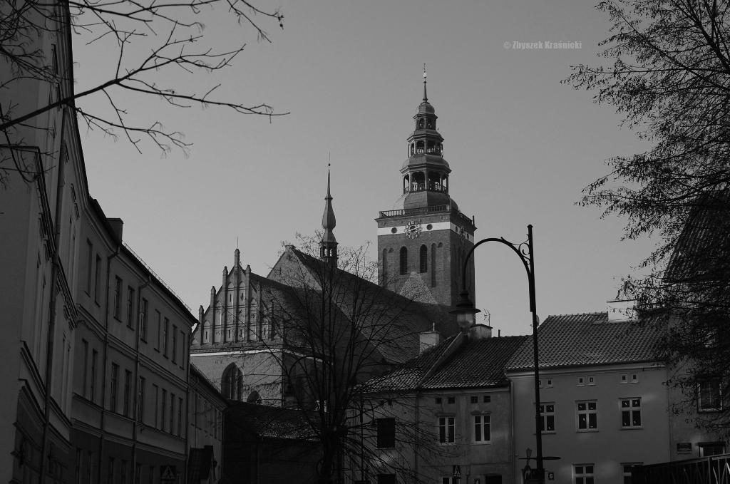 Warmia monochromatycznie oraz o majątku rodziny Patzig w olsztyńskich Pozortach