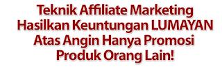 FB Affiliate Income