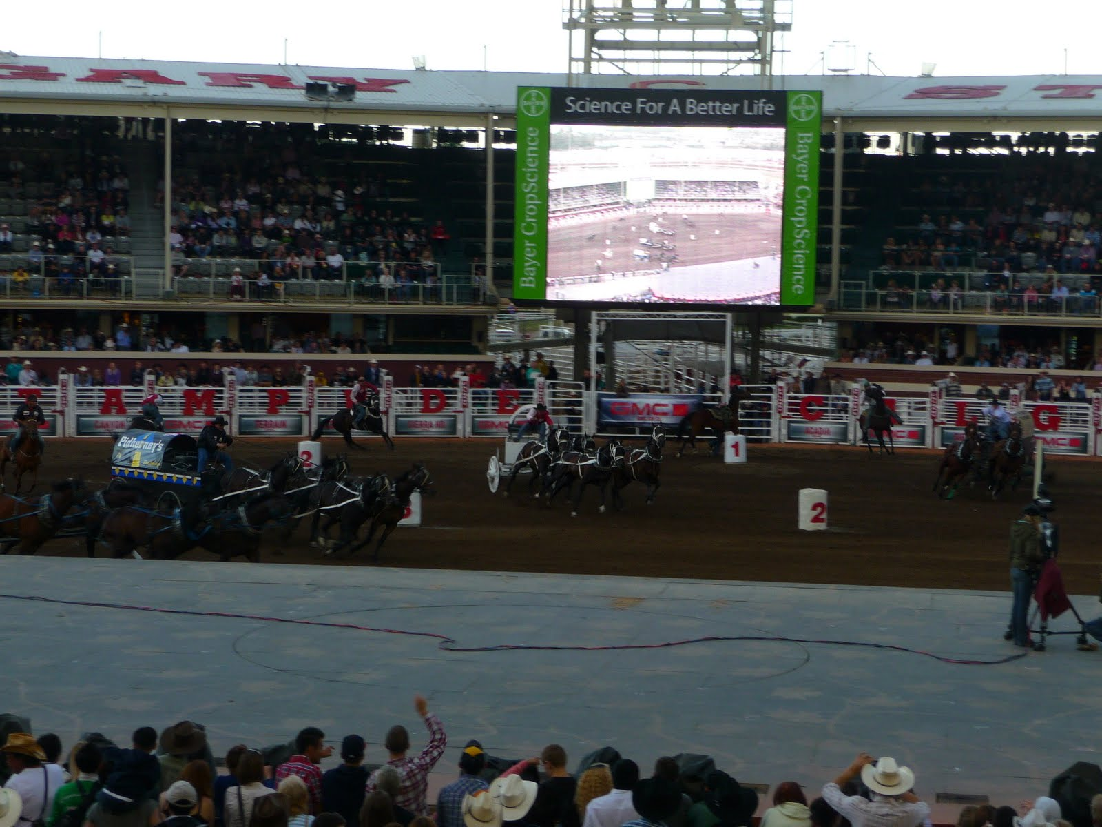 200 Ve Routhier Calgary Stampede