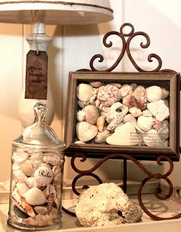 shadow box filled with shells