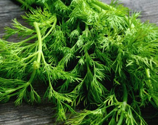 10 Health Benefits Of Dill