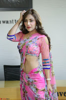 Actress Angela Krislinzki in Pink Saree Blouse Exclusive Pics March 2017 ~  072.JPG