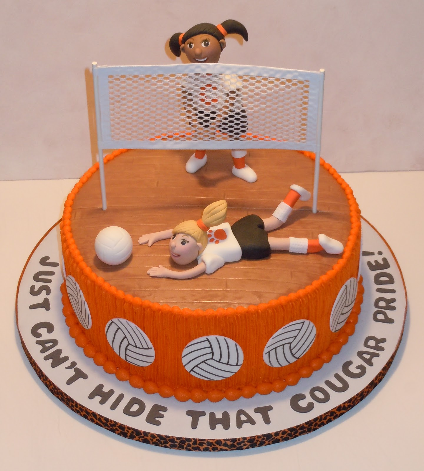 Unique Volleyball Cake Ideas 37570 The Icing On The Cake W