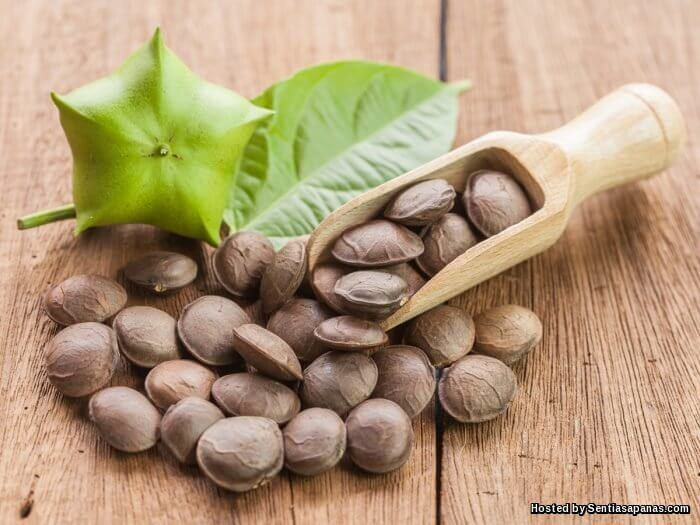 Khasiat Kacang Sacha Inchi Tinggi Kandungan Omega 3