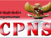 Pengumuman CPNS 2017/2018