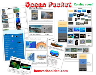 http://homeschoolden.com/2016/04/26/ocean-unit-packet-marine-habitats-currents-ocean-floor-ocean-life-and-more/