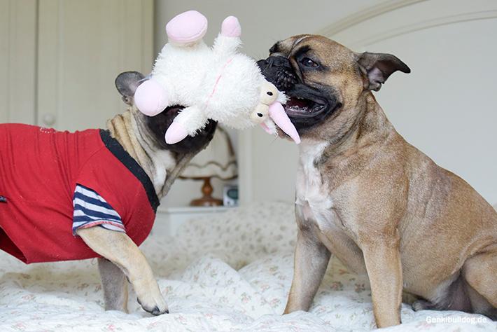 Hundespielzeug Einhorn
