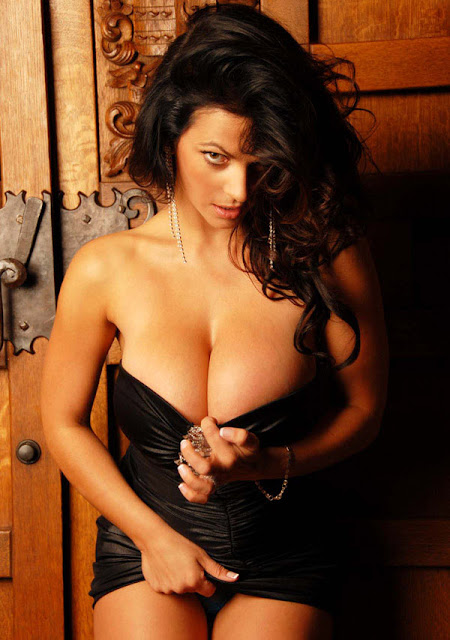 denise milani collection