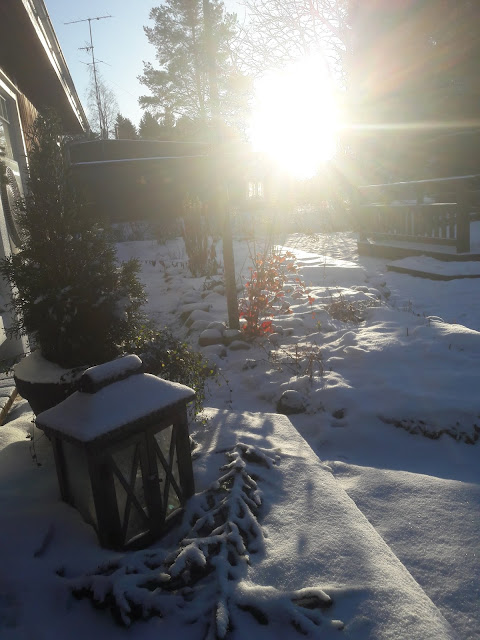 talvinen sää