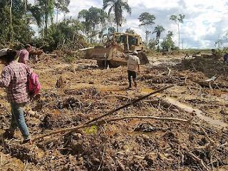 Deforestacion en Peru