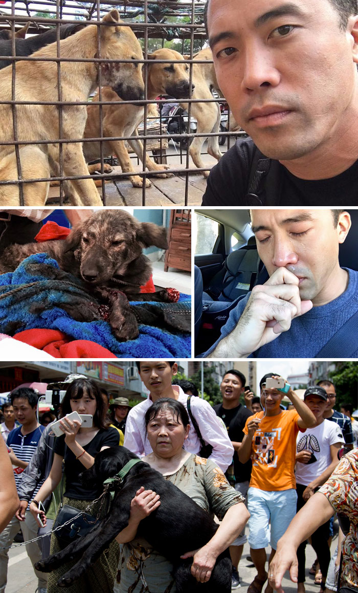 40 Times 2016 Restored Our Faith In Humanity - This Man Saved 1000 Dogs From Yulin Meat Festival Despite Being Beaten For This