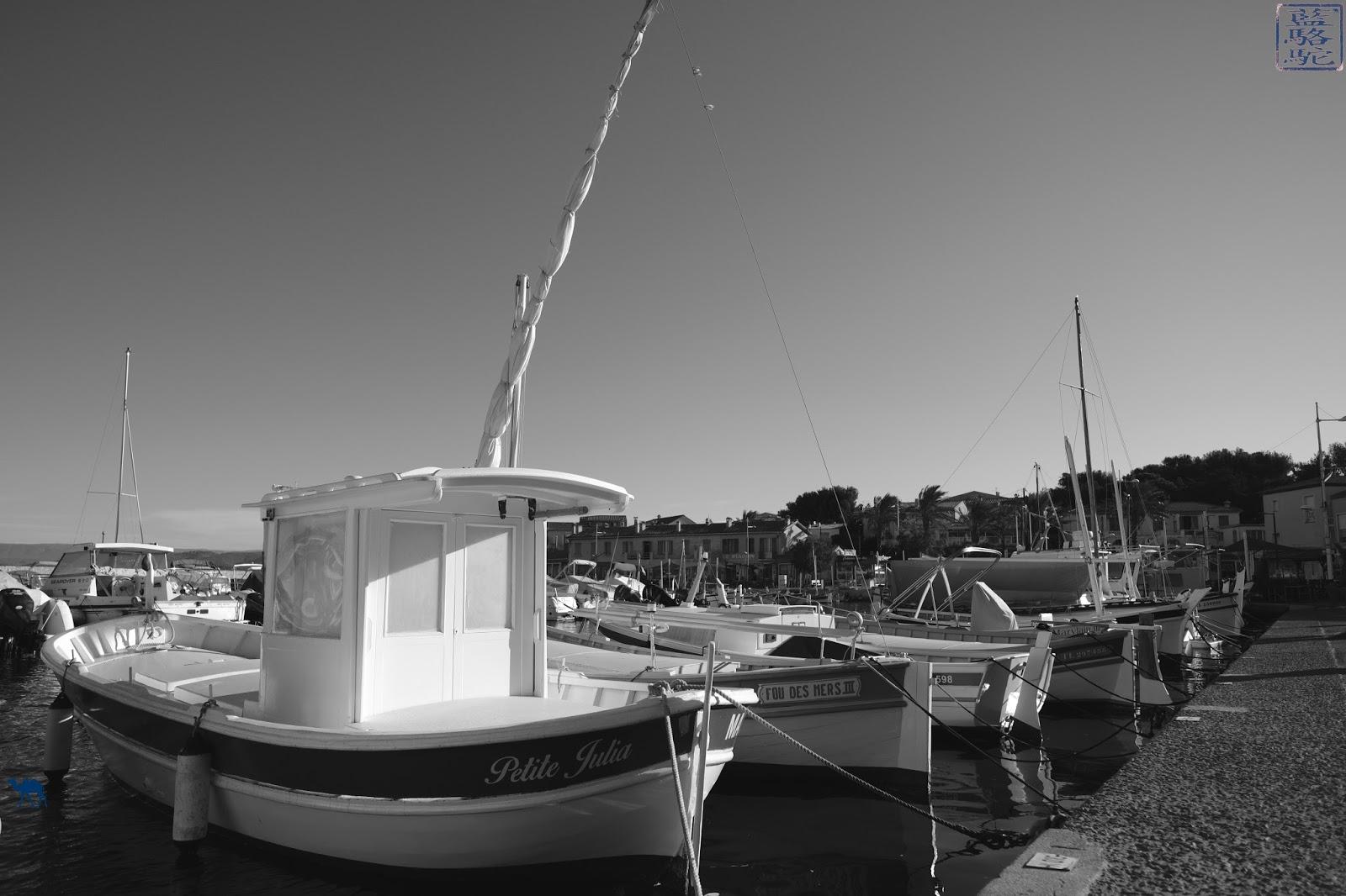 Le Chameau Bleu - Blog Voyage Var - Bateau du port du Brusc - Var