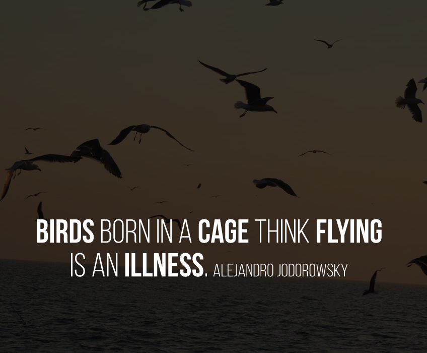 Birds born in a cage think flying is an illness. Alejandro Jodorowsky