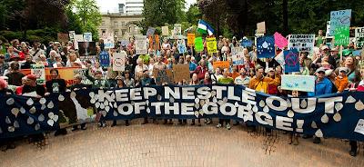 Oregon Water Watch Update: Nestlé Still Wants Cascade Water