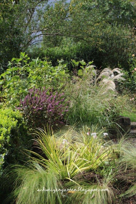 Gräser Im Garten Gestaltungsideen gräser im garten gestaltungsideen die schönsten einrichtungsideen