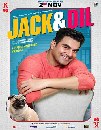 Jack & Dil (2019) Hindi 720p HDTV x264 700MB Movie Download
