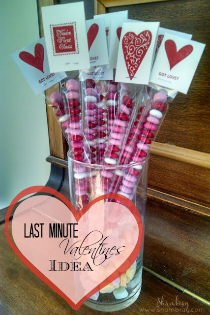 Looking for ideas for a valentine gift? This is a great fun project where you DIY your own Valentine.
