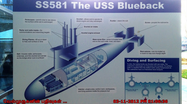 SS581 The USS Buleback