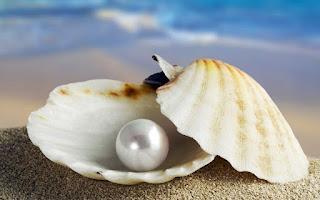Piedra Mágica: Perla