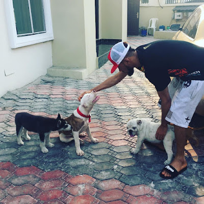 RAPPER PHYNO SHOWS OFF HIS THREE CUTE DOGS ON INSTAGRAM