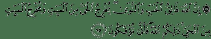 Surat Al-An'am Ayat 95