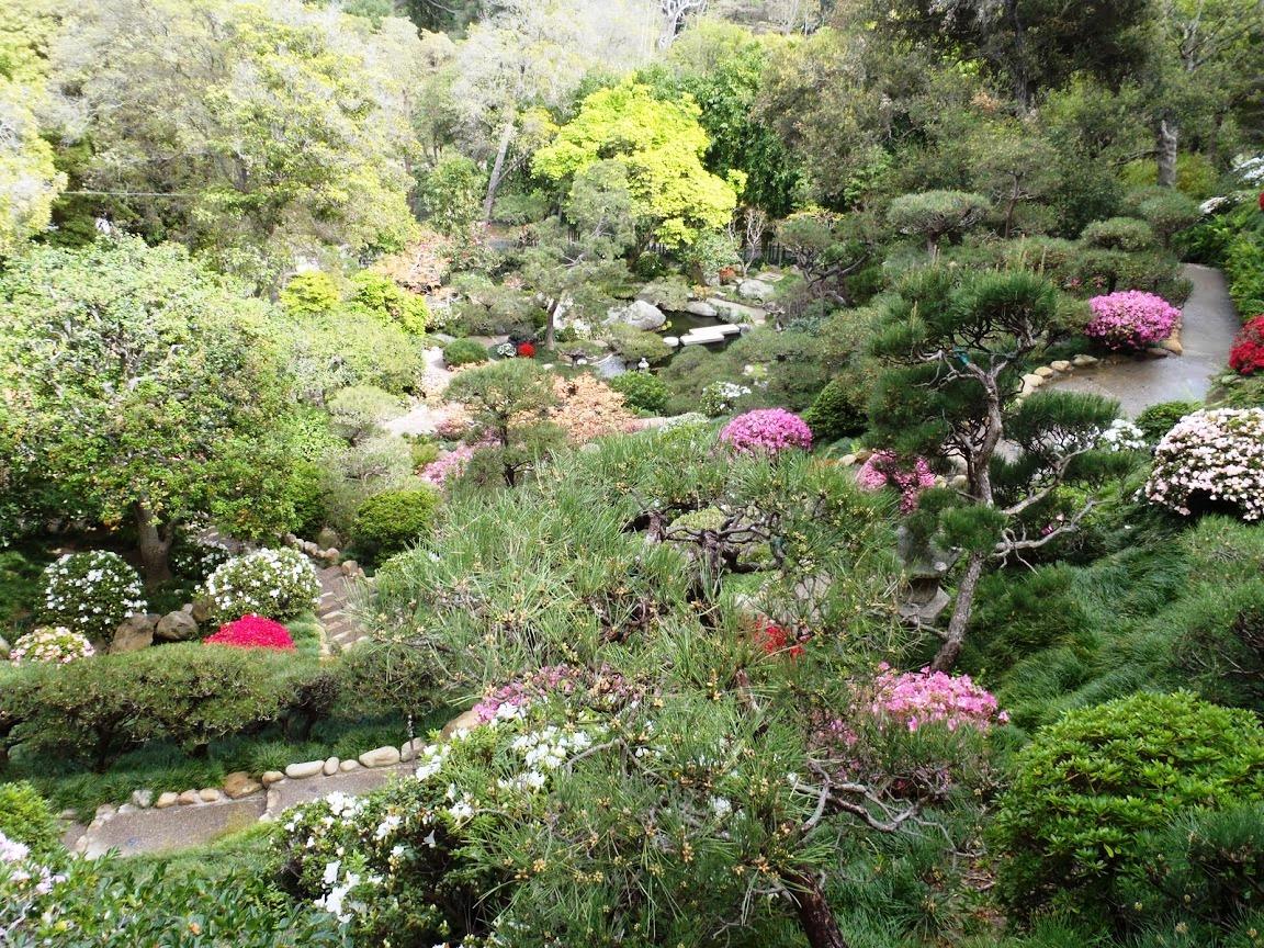 Los Angeles Japanese Garden: Modern Homes Los Angeles: Preserving Our U.S. Landscapes