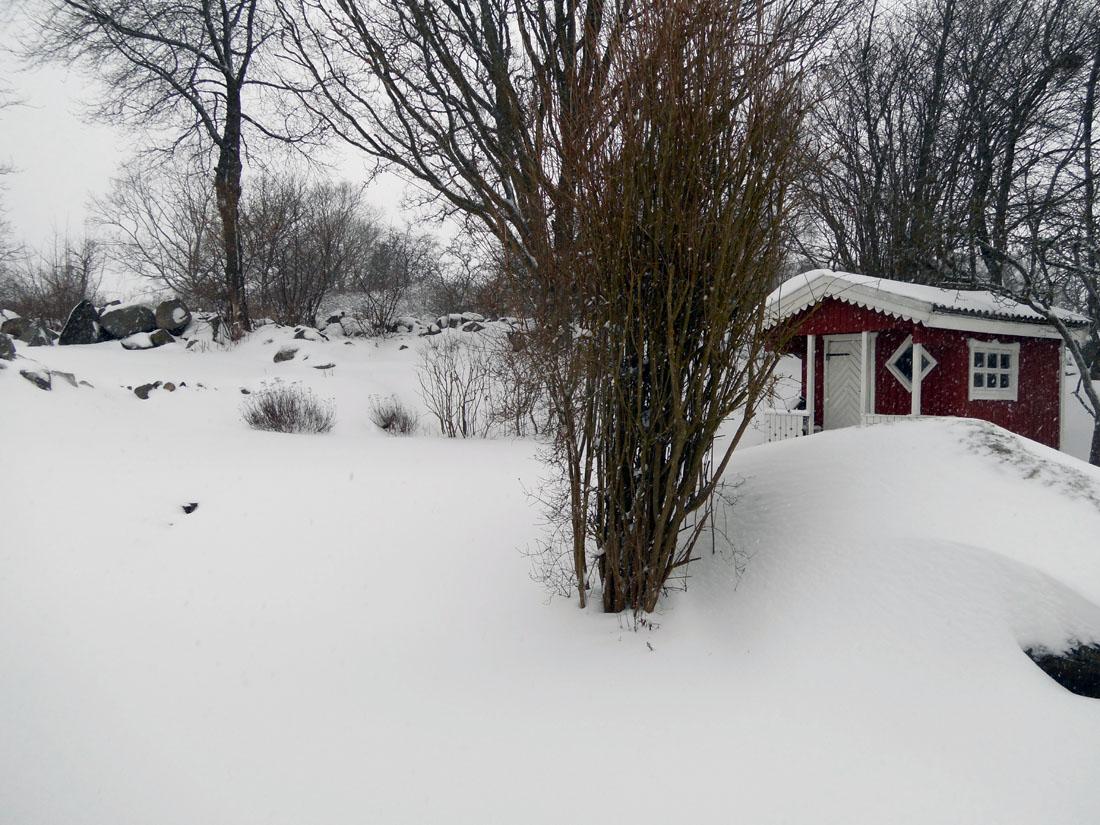 Il giardino con la neve