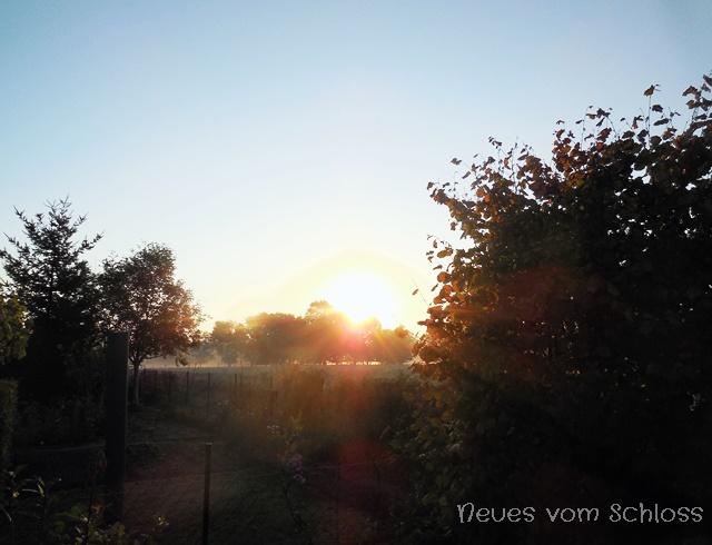 12 von 12 (Oktober 18)- neuesvomschloss.blogspot.de