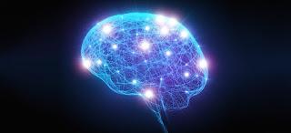 Alzheimer's Reading Room Brain