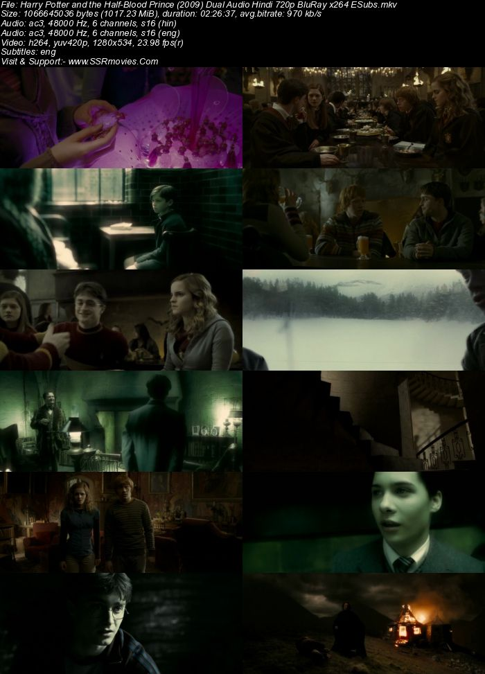 Harry Potter and the Half-Blood Prince (2009) Hindi 480p & 720p - Film4me