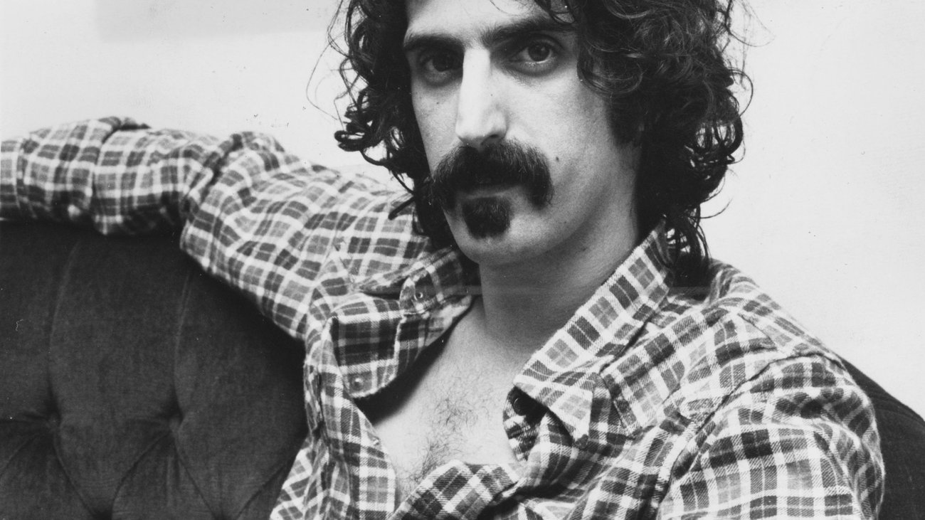 Cranes Are Flying Eat That Question Frank Zappa In His Own Words