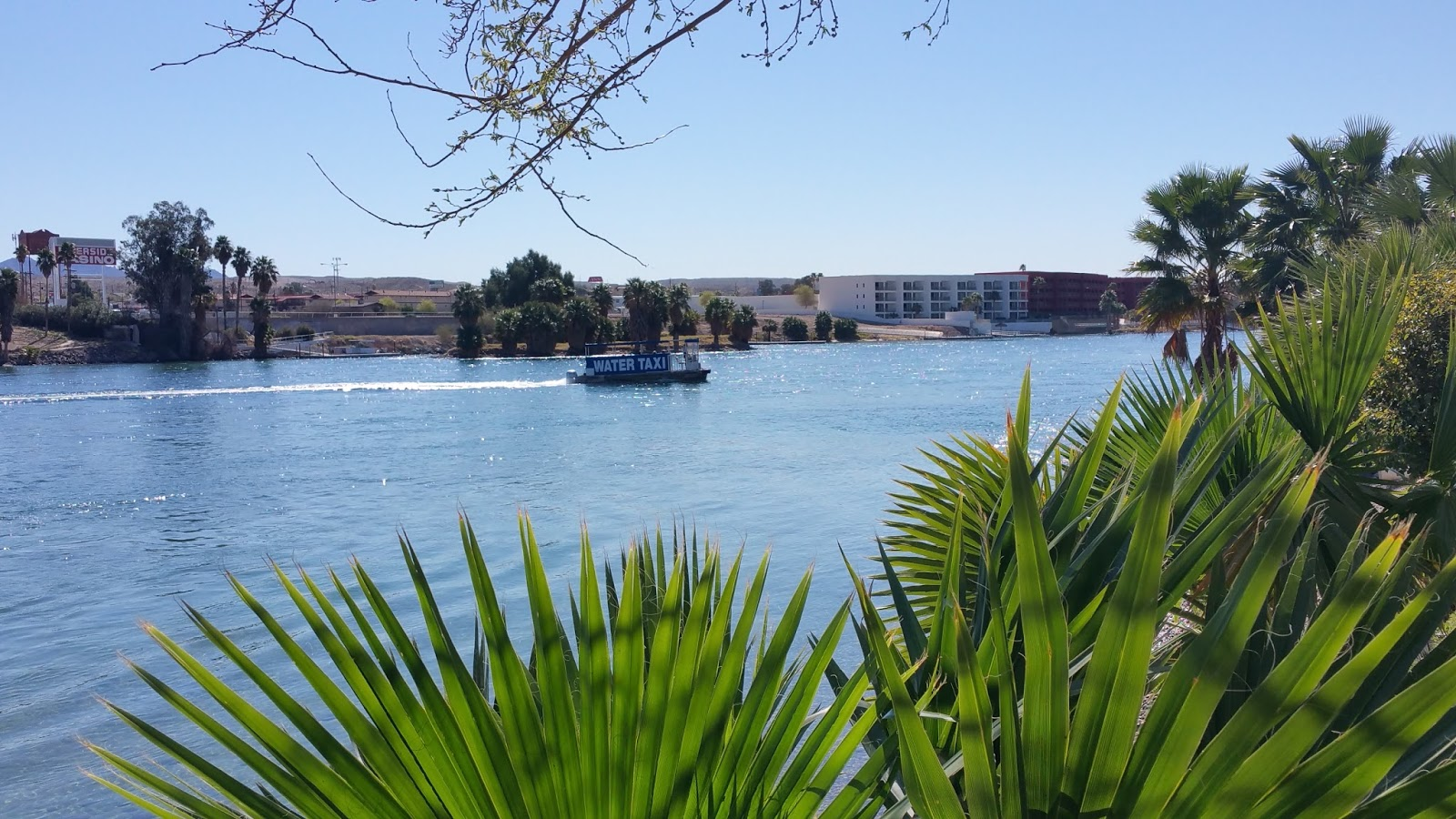 how to get to laughlin nevada from las vegas