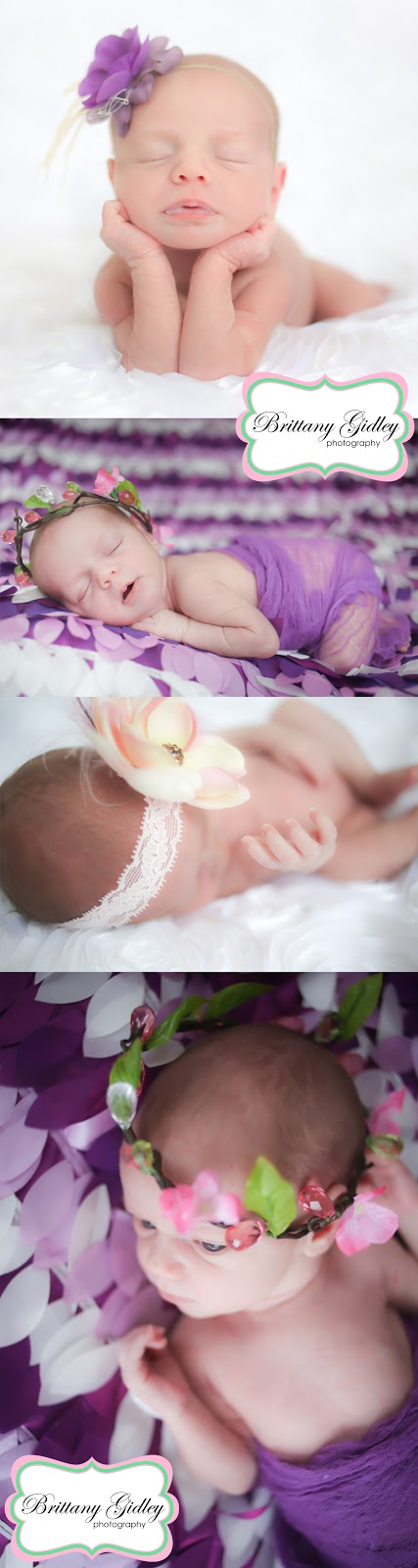 Introducing Piper | Northeast Ohio Newborn Photography
