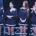 Watch the fancams from T-ara's Premium Live in Japan 2