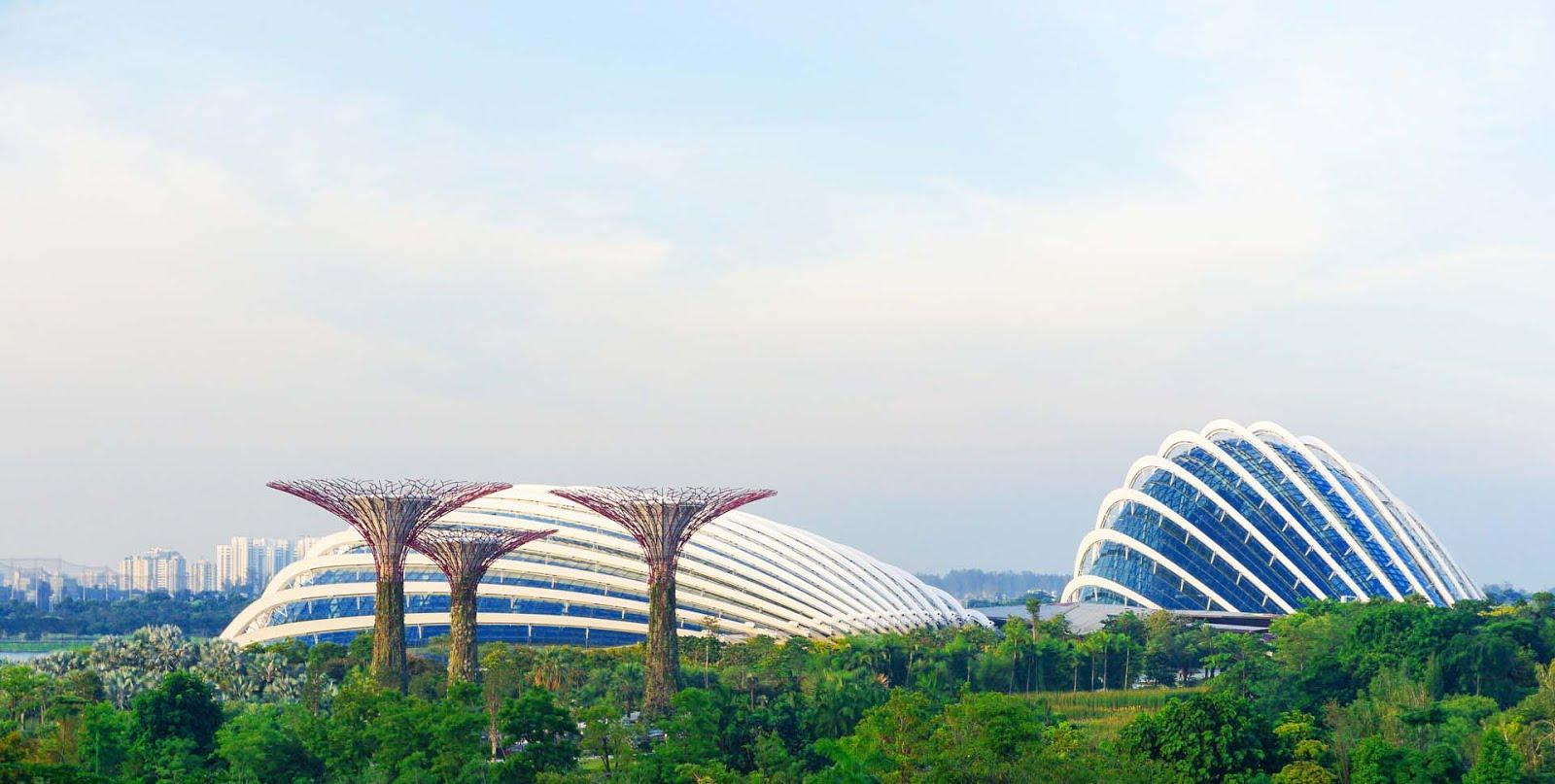Fakta lain tentang Flower Dome, Harga Tiket dan Jam Operasional Flower Dome, Flower Dome ini merupakan sebuah tempat yang unik dan mempesona yang wajib kalian kunjungi kalau liburan ke Singapura