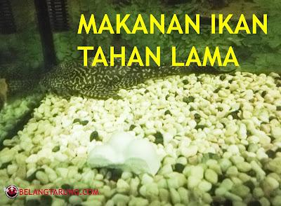Makanan Pelet Ikan Tahan Lama