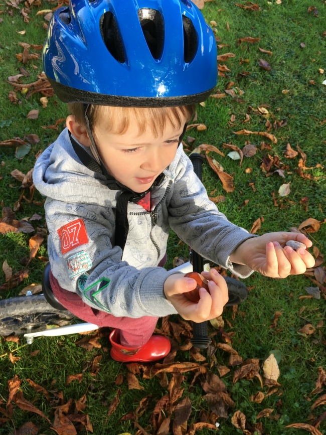 Our-Weekly-Journal-18th-sept-2017-Conkers-boy-on-bike-wearing-helmet-and-holding-conkers
